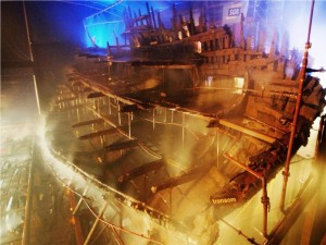 MaryRose-conservation1